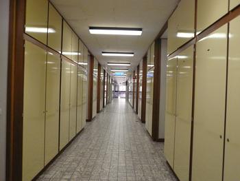 Gratis foto gang kasten kantoorgang kantoorgebouw bureel burelen hoofdkantoor - Kleur corridor ...